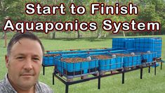 4 Easy Steps to Set-Up Your Own Backyard Aquaponics System - Tools And Tricks Club Aquaponics System, Hydroponic Farming, Aquaponics Greenhouse, Hydroponic Growing, Aquaponics Fish, Fish Farming, Aquaponics Supplies, Diy Hydroponics, Indoor Aquaponics
