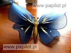 Znalezione obrazy dla zapytania motyle z rajstop