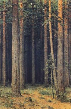 forest (value)