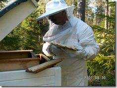 Basic Beekeeping Good article on keeping records when you inspect a hive.