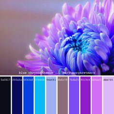 Paint Color Palettes, Colour Pallette, Paint Colors, Beautiful Color Combinations, Color Combos, Color Blending, Color Mixing, Color Schemes Design, Color Balance