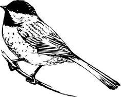 chickadee clip art free black capped chickadee clipart graphic rh pinterest com Chickadee Bird chickadee clipart black and white