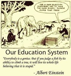 """Everybody is a genius, but if you judge a fish by its ability to climb a tree, it will live its whole life believing that it is stupid."" - Albert Einstein"