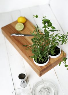 DIY Herb Planter Cut