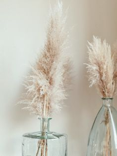 Pampas: The Decor Trend Everyone's Wild For - C Magazine Tall Vase Decor, Tall Vases, Grass Decor, Living Room Decor, Bedroom Decor, Home Decor Styles, Home Interior Design, Decoration, Beauty Room