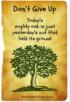 Hold your ground, remain still, let yourself develop deep roots, just like the mighty oak...once your roots are planted deep inside your internal being, nothing not even the most dreadful drought can bring you down.  Hold firm.