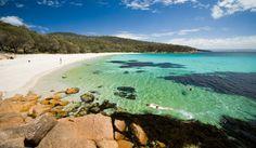 Walk Tasmania's Freycinet Experience | Australian Traveller Great Walks, Visit Australia, Next Holiday, Small Island, Tasmania, Trekking, The 100
