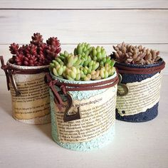 Improvise planting succulents in cans Growing Succulents, Succulents In Containers, Cacti And Succulents, Planting Succulents, Small Garden Fairies, Garden Trees, Garden Art, Succulent Arrangements, Succulent Pots