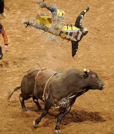 Professional Bull Riding - Photos - SI.com