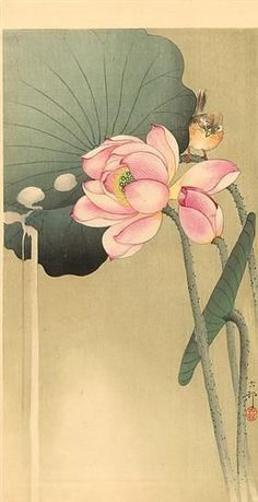 小原古邨 Ohara Koson, Songbird and lotus Japanese Painting, Chinese Painting, Chinese Art, Art And Illustration, Ohara Koson, Art Japonais, Wow Art, Arte Floral, Japanese Prints