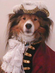 international dog costume - Google Search
