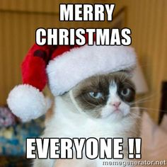 grumpy cat christmas pics merry christmas everyone grumpy cat santa hat - Merry Christmas Meme Generator