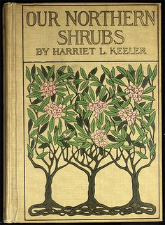 Our northern shrubs and how to identify them : a handbook for the nature-lover - Catalog - UW-Madison Libraries