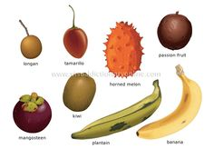 FOOD & KITCHEN :: FOOD :: FRUITS :: TROPICAL FRUITS [1] image ...