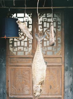 drying salted fish | I imagine they've been there for a while | jen huang photo