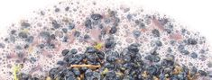 Fermentation - an exciting part of winemaking! Learn how to make wine at http://ihowtomakewine.com !  Happy Wine Making :)