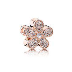 Dazzling Daisy Charm, PANDORA Rose? & Clear CZ | @giftryapp