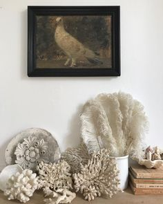 I like this marvellous photo Beach Cottage Style, Beach Cottage Decor, Beach House, Cottages By The Sea, Beach Cottages, Primitive Bathrooms, Seaside Decor, White Doves, Displaying Collections