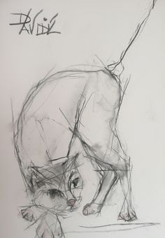'Purdy' Original Charcoal by Valerie Davide - Mounted £225