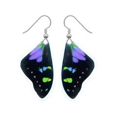 REAL butterfly wing earrings  Graphium Weiskei by AsanaNaturalArts
