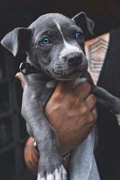 Oh so cute!!
