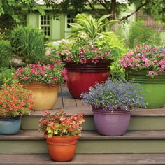 How does your container garden grow? Enter our Refresh For Summer Pin To Win Sweepstakes for the chance to win a $500 Walmart Gift Card!