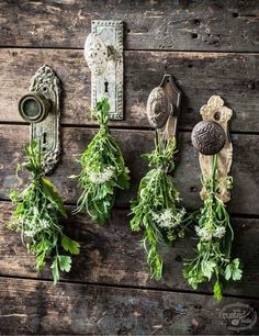 Doorhandles & herbs as natural garden decor