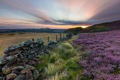 Pentlands by Tom Drysdale