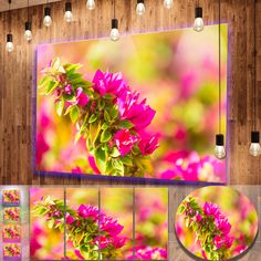awesome Designart 'Beautiful Pink Bougainvillea Flowers' Floral Metal Wall Art Check more at http://hasiera.co.uk/s/furnishings/product/designart-beautiful-pink-bougainvillea-flowers-floral-metal-wall-art/