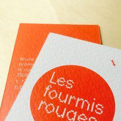 fouinzanardi - fz_identity_fourmisrouges