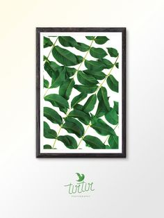 Leaf wall art print is instant printable art for any home decor. You can print photos on your home printer or at your local print salon. Enjoy digital art feel like the creator of home interior!  Enjoy 30% savings when you purchase two or more prints. Use coupon SAVE30 at checkout.  Please note This digital printable photography is designed for instant download. No physical product will be shipped. Colors may vary slightly due to different monitors. Once you pay for goods appear a link where…