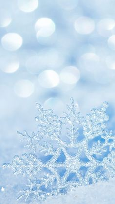 Winter Snowflake iPhone 7 Plus Wallpaper Winter iPhone Wallpapers – 28 Sweet Winter iPhone…Free Winter Wreath Wallpaper or Background for your…Blue, Gold and White Winter Themed Wallpaper or…