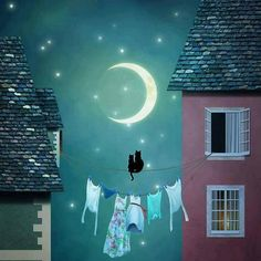 Mi Universar: La luna y los gatos