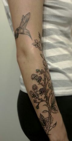 Blackberry Plant Tattoo Blackberry humming bird