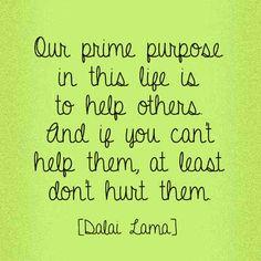 44 Best Dalia Lama Quotes images