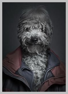 DogMan Portraits by Sebastian Magnani (via Ink-system.co.uk)