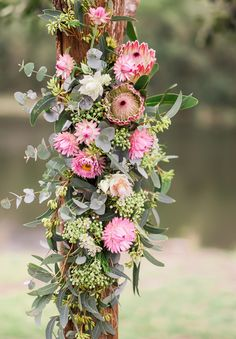 A pink wedding theme is one of the most popular colour schemes out there; whether it's dusky rose pink or delicate baby pink, couples seem to adore it. Protea Wedding, Bush Wedding, Wedding Bouquets, Wedding Dresses, Pink Wedding Theme, Floral Wedding, Wedding Flowers, Australian Native Flowers, Rustic Bouquet