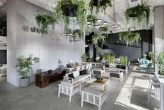 Showroom Of Fragile Garden Furniture - Picture Gallery on Home Inteior Ideas 2532