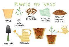 brazilian illustration for garden
