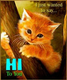 """From: Sarah Young - I just wanted to say """"Hi!"""" ❤ used June 20 2017 Morning Greetings Quotes, Good Morning Messages, Good Morning Wishes, Good Morning Images, Hello Quotes, Hi Quotes, Cute Quotes, Good Night Quotes, Good Morning Good Night"""