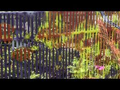 Artist Todd Gilens discusses his project, Shade, in this two minute video by Jim Mayer of Ideas in Motion. Shade House, Shade Plants, Shades Of Green, Botanical Gardens, Houses, House Design, Natural, Artist, Painting