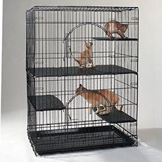 ProSelect Plastic Cat Deluxe Platforms Set of 3 ** For more information, visit image link.