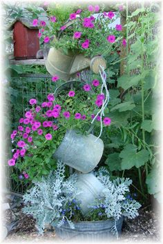 How whimsical! Galvanized tipsy pots with petunias dusty miller and lobelia...