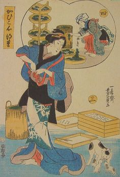 江戸時代の猫浮世絵「かひこ心得草」の実物写真