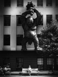 當攝影師在對的時間按下快門..... on KAIAK.TW   城市美學的新態度