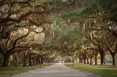 Charleston, South Carolina--Actually, I'm pretty sure I've been there...