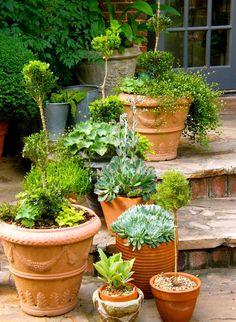 P O T A G E R: Topiary