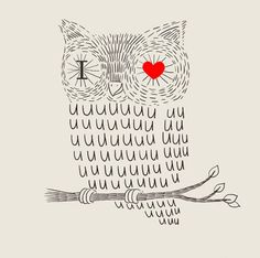 Lovely owl illustration.