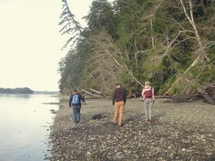 The Evergreen State College beach and forest by sarahcass, via flickr
