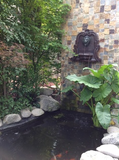 Back side of BBQ......fountain into koi pond
